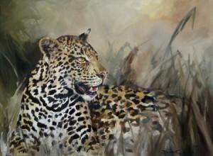 Leapard-Hidden in Grass<1010x760mm><oila>
